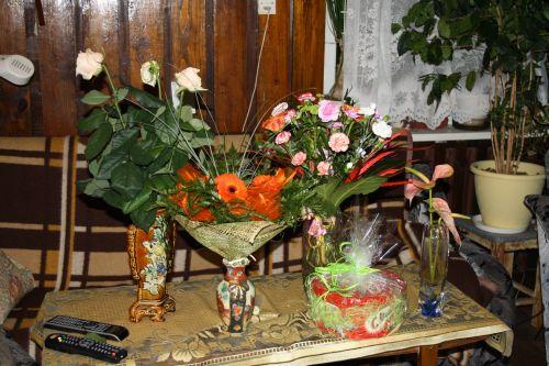 Blog Marek